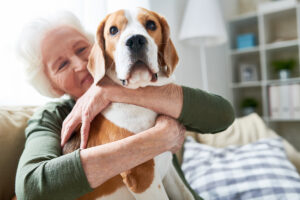 Home Care O'Fallon, MO: Pet Ownership and Seniors